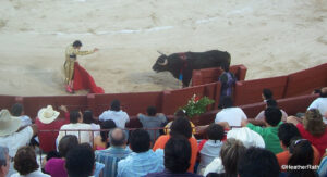 Read more about the article BULLFIGHTING: YES? NO?