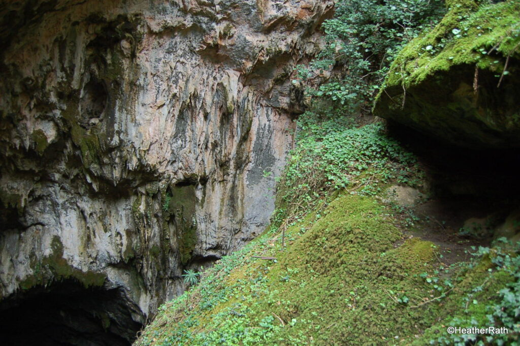 Entrance to the cave.